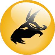 Segno zodiacale Capricorno - Capricorn
